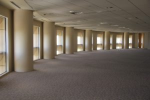 The Top 5 Unpleasant Things that Could be Hiding in Your Carpet