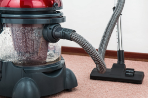 6 Nasties that Could be Living in your Carpet