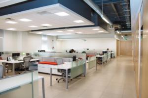 5 Office Organization Ideas for Maximum Productivity